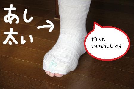 27_20121202224618.jpg