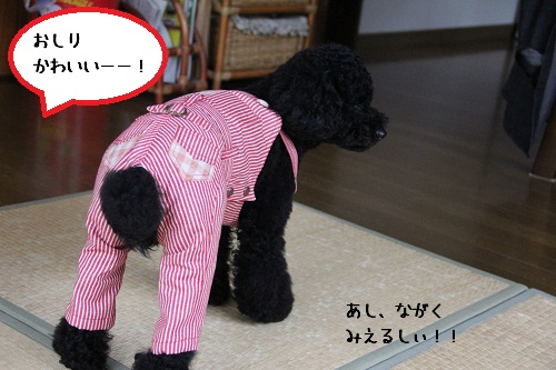 28_20121031003719.jpg