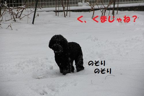 2_20130226001334.jpg