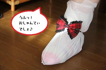 30_20121202224621.jpg