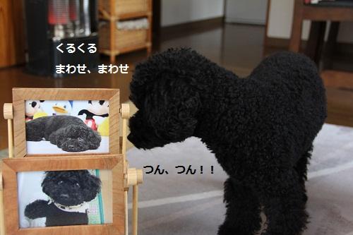 36_20121222001001.jpg