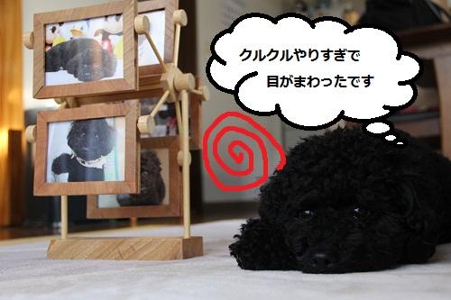 37_20121222001001.jpg