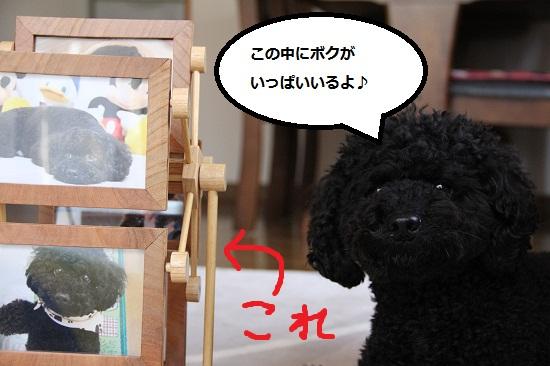 38_20121222001001.jpg