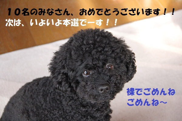 3_20130219142616.jpg