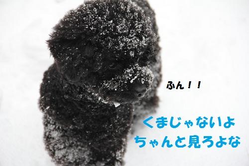 3_20130226001334.jpg