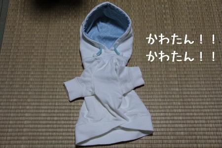 40_20121209005105.jpg