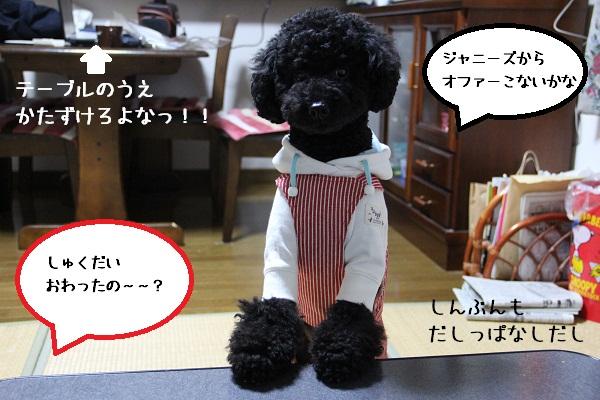 43_20121209005152.jpg