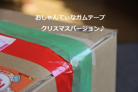 48_20121223215639.jpg