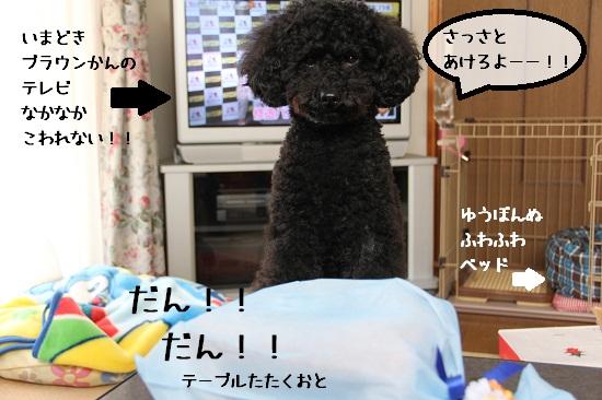 50_20121111222032.jpg