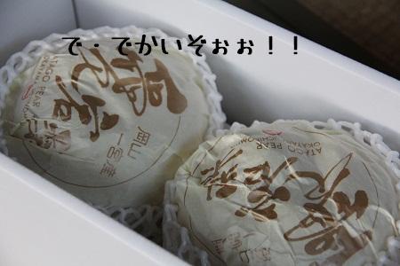 50_20121211004433.jpg