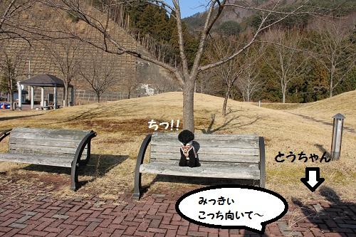51_20130122201303.jpg