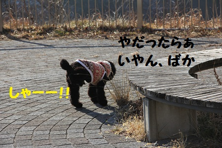 54_20130122201302.jpg