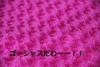 60_20121224231442.jpg