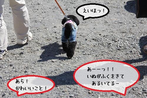 71_20121015210422.jpg