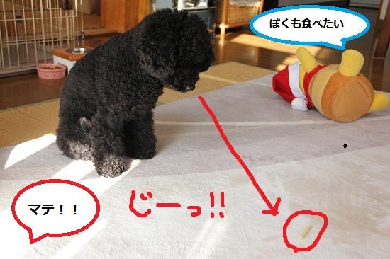 85_20121226235039.jpg