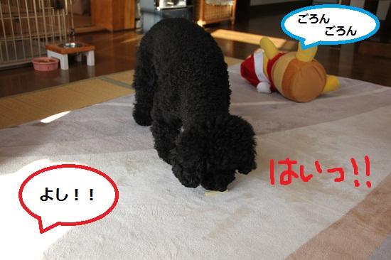 86_20121226235132.jpg