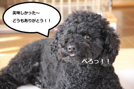 89_20121226235132.jpg