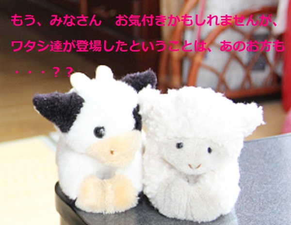 IMG_97312.jpg
