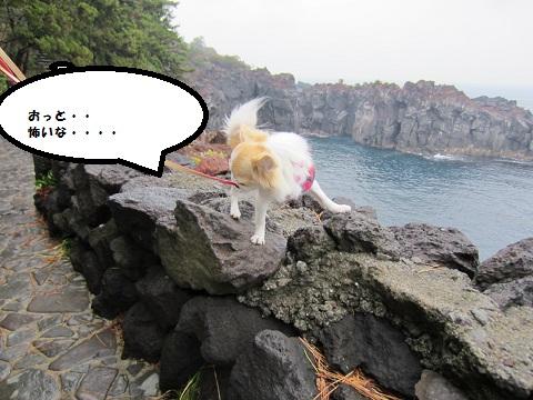 城ケ島02