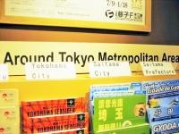 羽田空港の外国語パンフレット表示