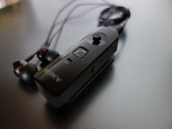 DSC00141R.jpg