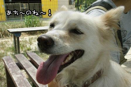 10_20120819200202.jpg