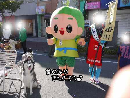 10_20121025193259.jpg