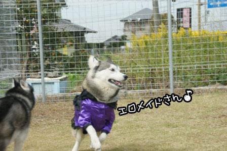 11_20121027204132.jpg