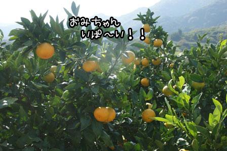 12_20121029211849.jpg