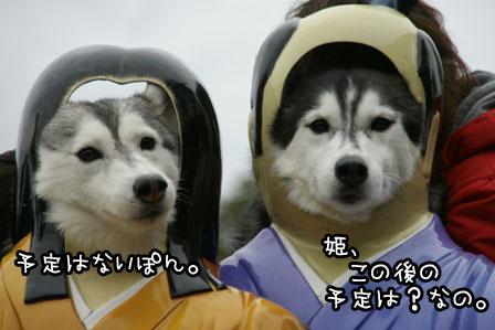 12_20121112202011.jpg