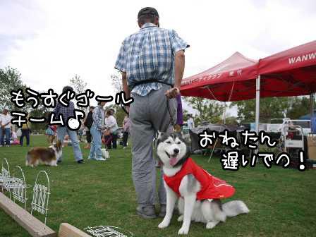 13_20121004195254.jpg