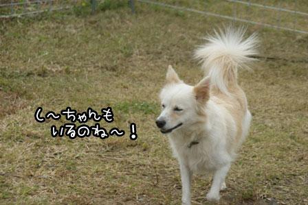 13_20121027204144.jpg