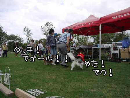 14_20121004195303.jpg