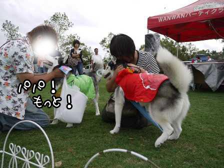 19_20121004195335.jpg