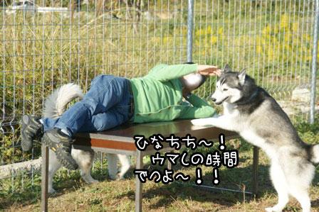 19_20121028214942.jpg