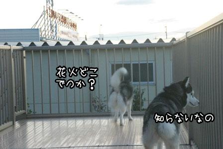 1_20120707213620.jpg