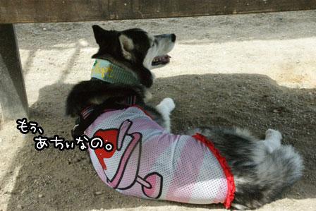 1_20120819200107.jpg