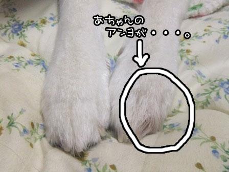 1_20121006195922.jpg