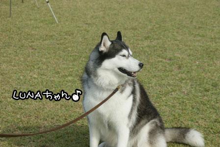 1_20121021220935.jpg