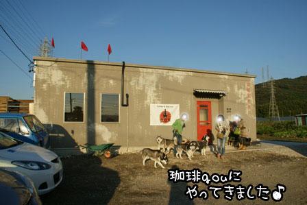 1_20121027203919.jpg