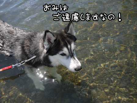 21_20120909164526.jpg