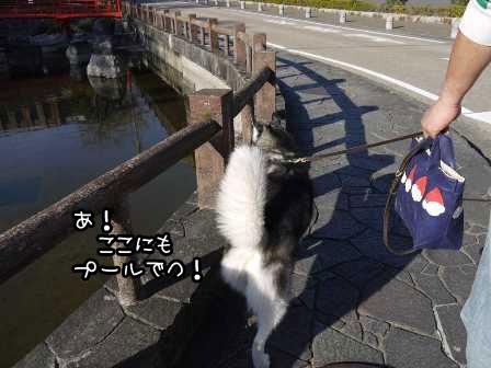 21_20121025193402.jpg