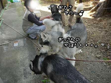 22_20121025193408.jpg