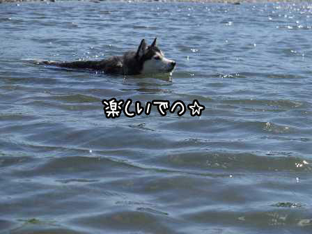 23_20120909164539.jpg