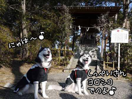 23_20130124192002.jpg