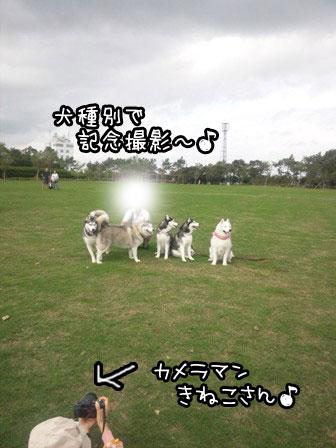 24_20121004195405.jpg