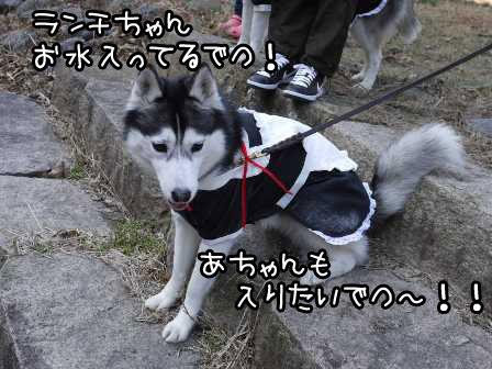 28_20130124192037.jpg