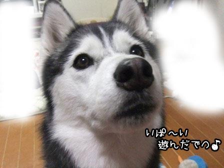 2_20120429211810.jpg