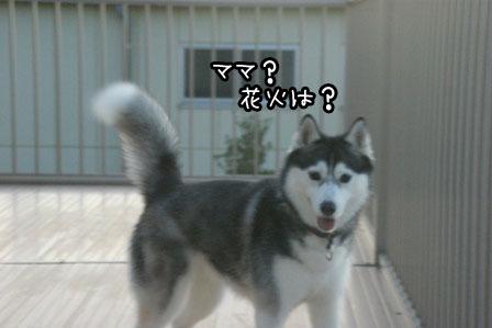 2_20120707213626.jpg