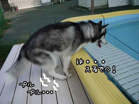 2_20120924210945.jpg